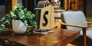 Shopify Case Studies